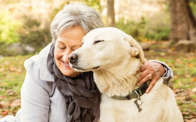 Pets help seniors stay happier, healthier wherever they live, studies show